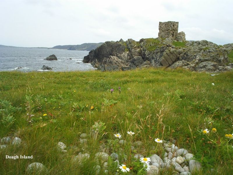 Carrickabreaghy Castle on Doagh Island