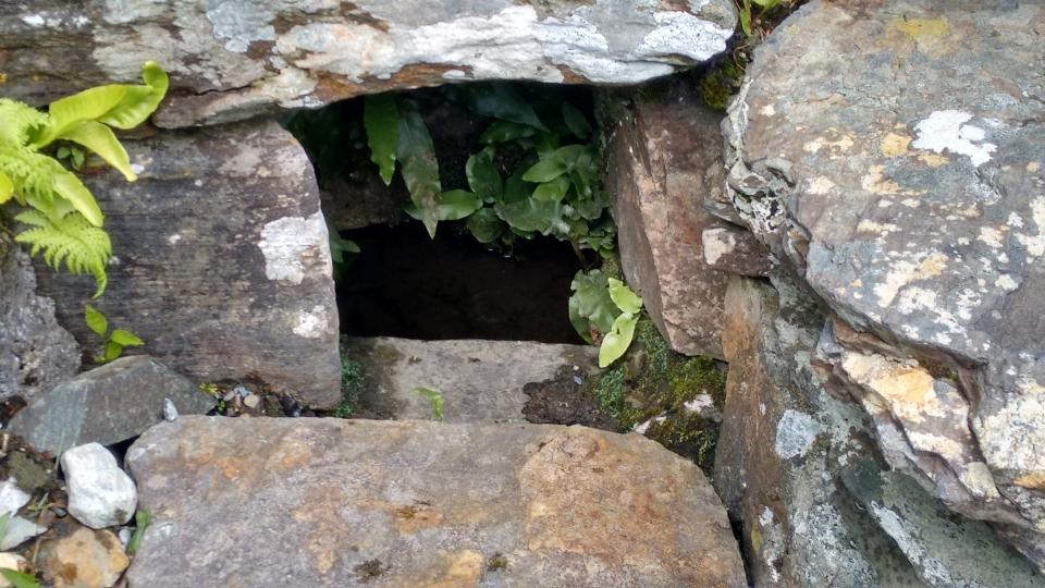 St Colmcille's Well, Gartan